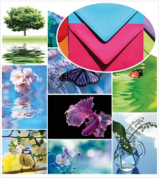 Bright_and_beautiful_Home_envelope