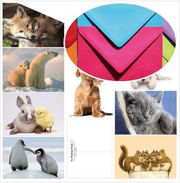 Cuddly_creatures_Home_envelope