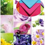 Spring_flowers_Home_envelope
