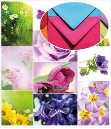 Spring_flowers_Home_envelope